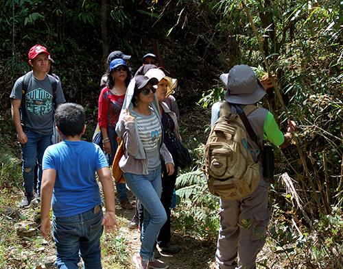 Desarrollo del Ecoturismo como alternativa económica para la conservación de la biodiversidad del Bosque Monte Potrero, Huánuco