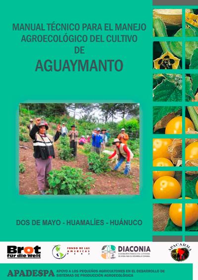 Cultivo de Aguaymanto con técnicas agroecológicas