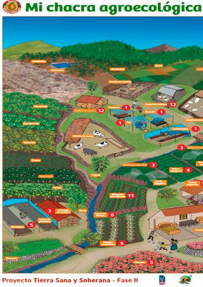 Construyendo mi chacra agroecológica y vivienda saludable